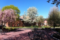 The Dominican Village Campus in Bloom