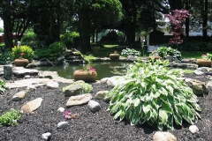 Koi Pond on the Dominican Village Campus